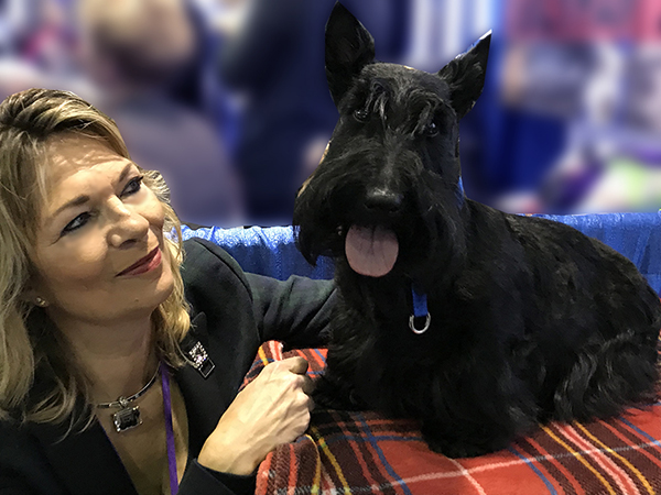 Scottish Terriers are fun and feisty