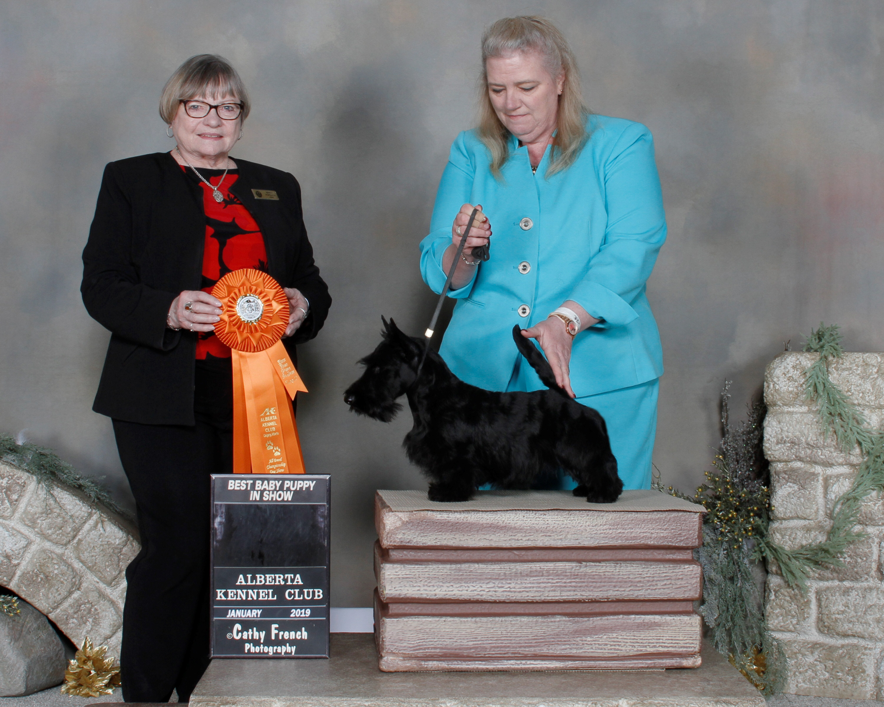 Scottish Terrier Barrister Sine Qua Non, at 4 months, Best Puppy in first show