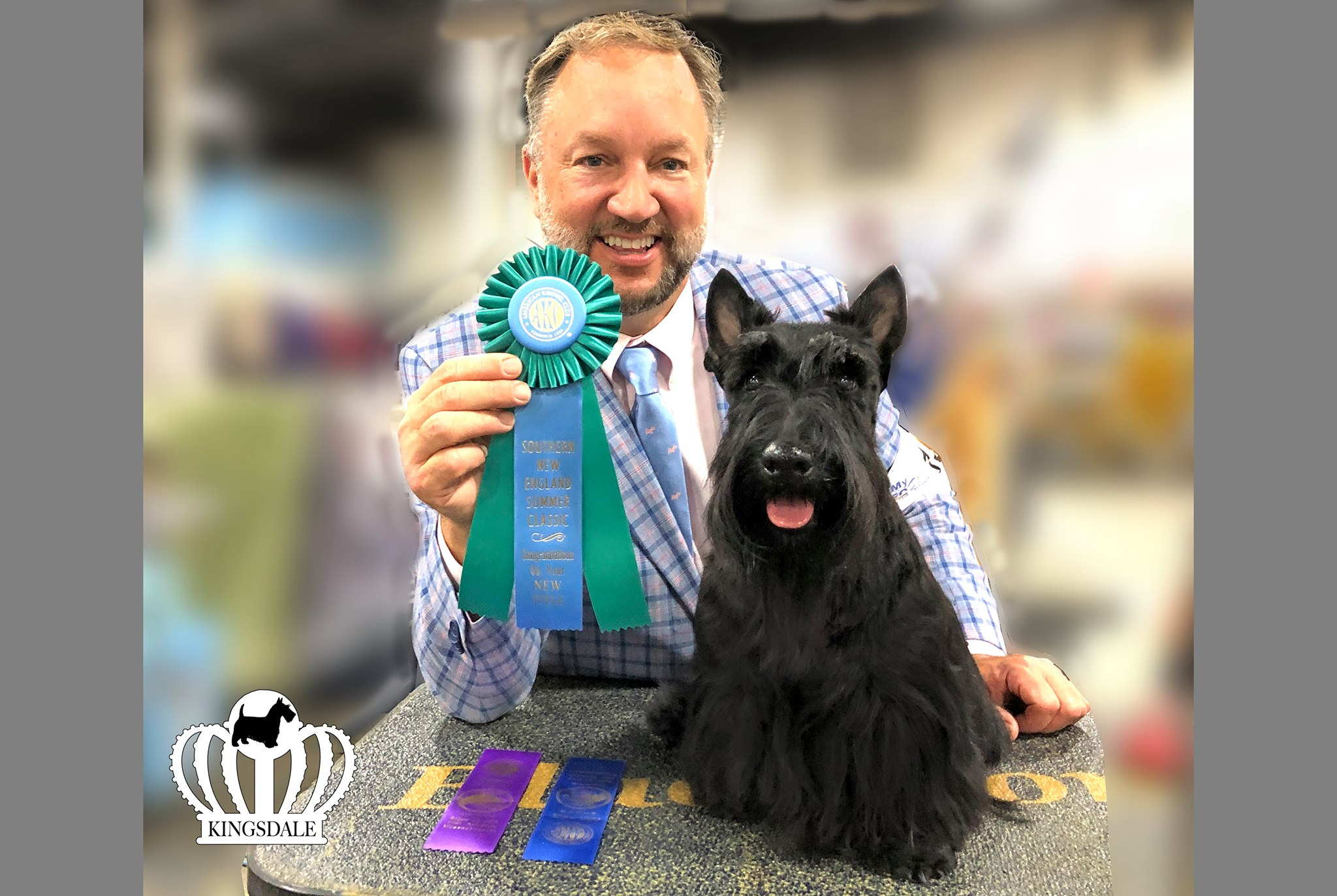 Geoff Dawson, professional dog handler, with new champion Scottish Terrier, Glenn Eyrie's You Be U at Kingsdale