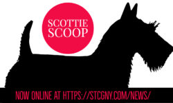 The Scottie Scoop, News from the Scottish Terrier Club of Greater NY